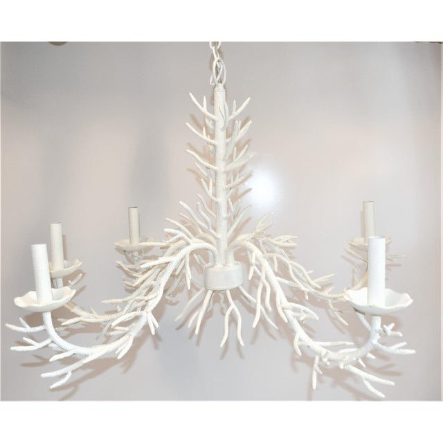 Off-white Palm Beach Chic Faux Coral Chandelier, Five Light For Sale - Image 8 of 10