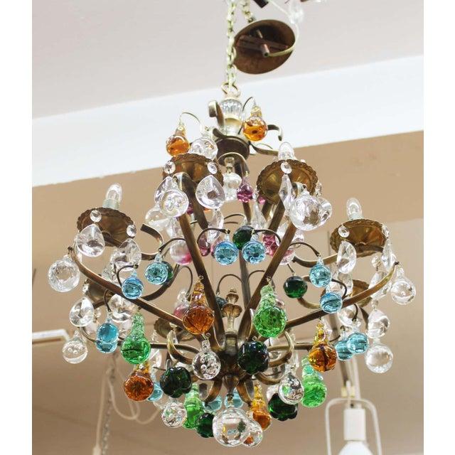 1950s 1950s Italian Mid Century Modern Murano Glass Fruit Chandelier For Sale - Image 5 of 13