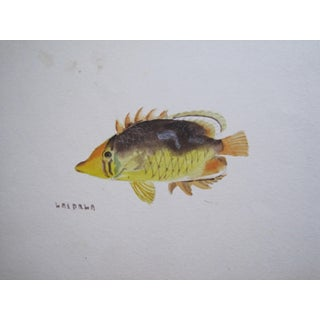 19th Century Original Watercolor Painting For Sale