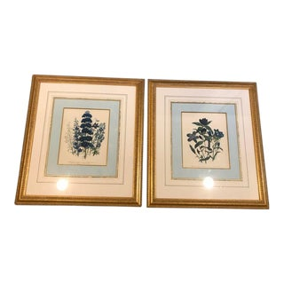 Loudon Framed Botanical Prints - a Pair For Sale