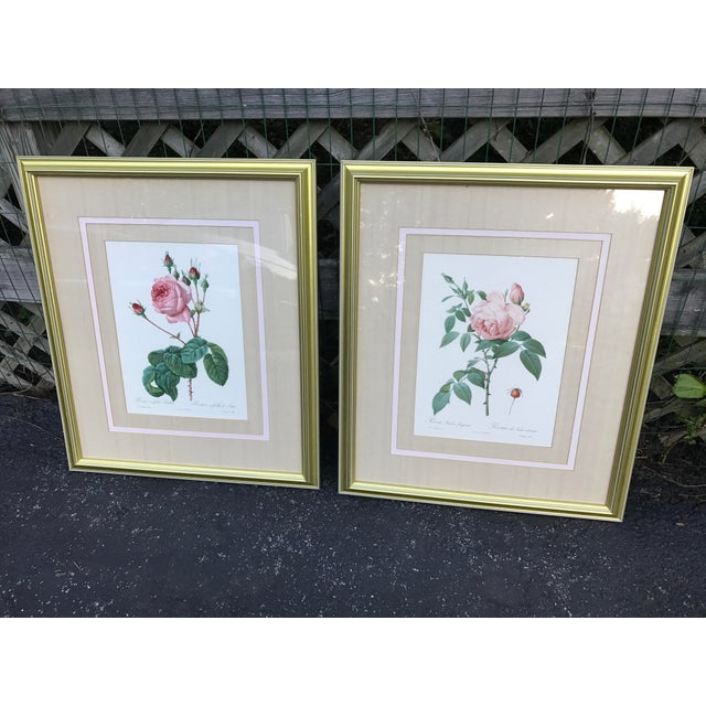 A striking pair of Pierre Joseph Redoute (1759-1840) Botanical Rose lithograhs are professionally triple matted, in a...