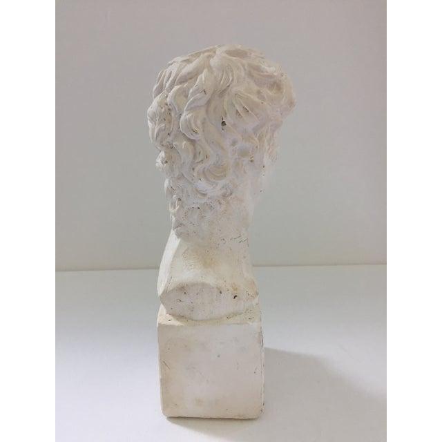 Plaster Bust of David Sculpture - Image 5 of 5