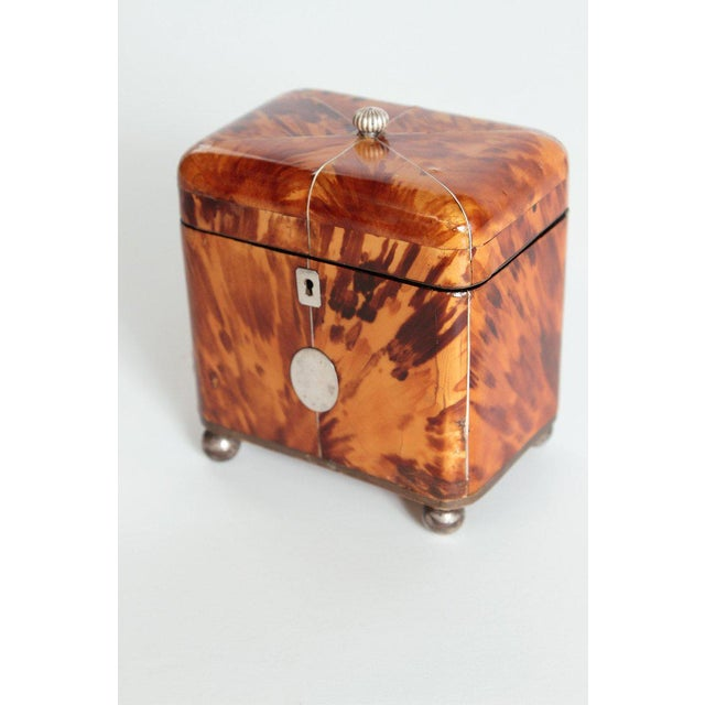 A English Regency tortoise shell tea caddy with a domed lid containing a silver final pull, silver key hole escutcheon and...