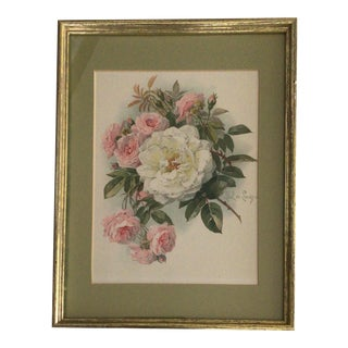 Vintage Framed and Matted 1905 Paul De Longpre Pink and White Roses Lithograph Printed by the Grey Co. New York For Sale