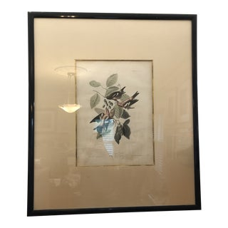 Mid 19th Century Antique John James Audubon The Birds of America White-Winged Crossbill Print For Sale