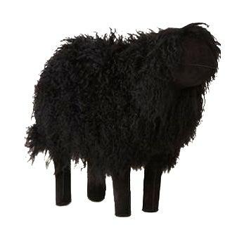 Tibetan Medium Black Sheep For Sale