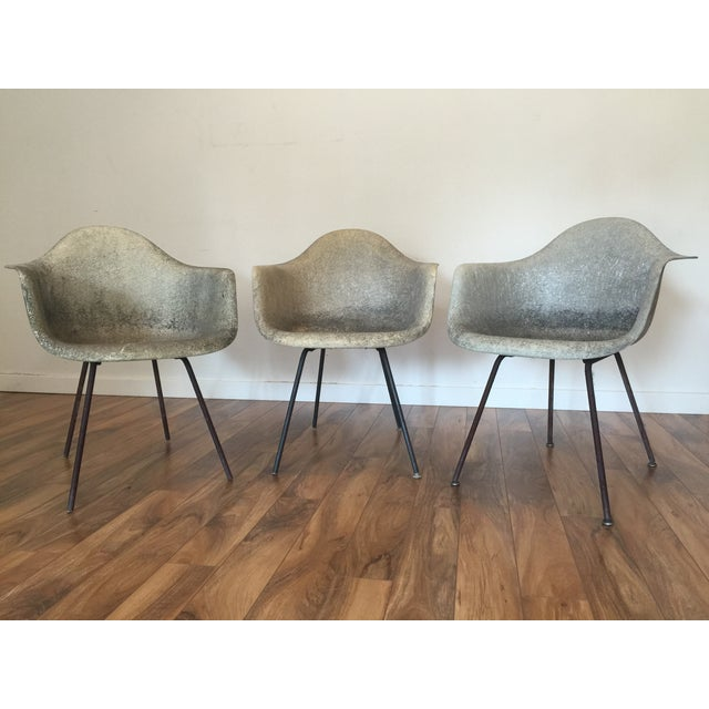 Eames Shell Arm Chairs - Set of 3 - Image 7 of 10