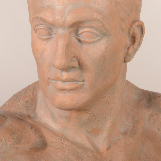 Italian Terra Cotta Male Bust For Sale - Image 4 of 7