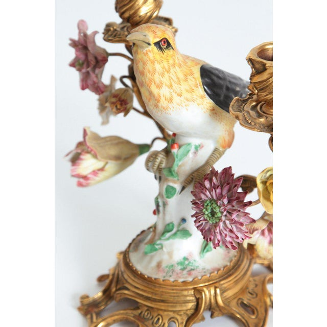 Pair of Early 20th Century Italian Porcelain Birds Mounted as Candelabra For Sale In Dallas - Image 6 of 13