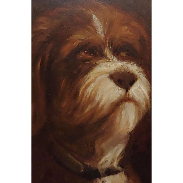 19th Century Portrait of a Fluffy Dog - Oil Painting For Sale - Image 4 of 11