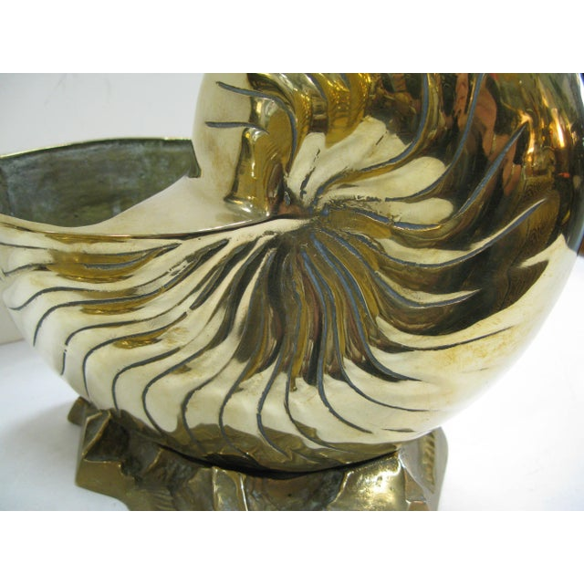 Vintage Huge Brass Nautilus Seashell Planters - a Pair For Sale In West Palm - Image 6 of 14
