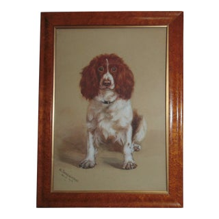 Antique Cocker Spaniel Dog Portrait Painting Watercolor Signed For Sale