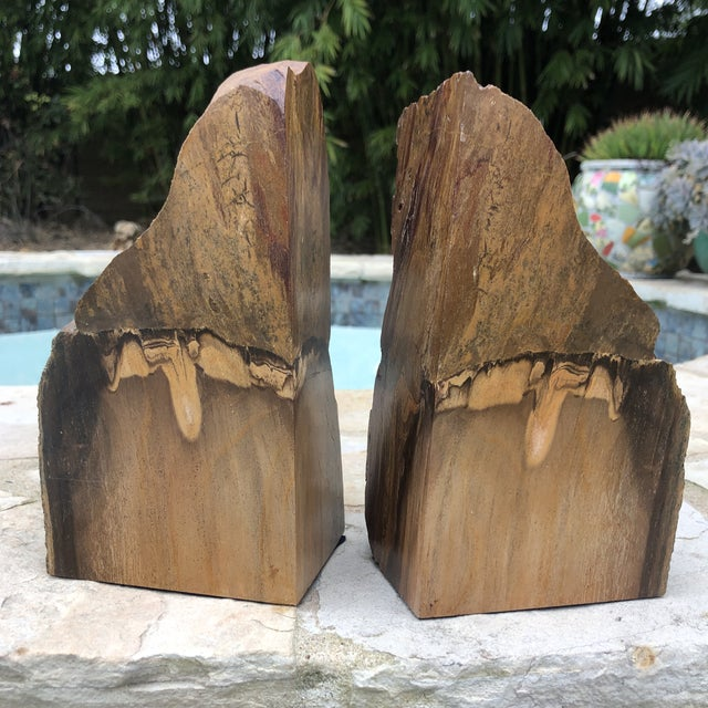 Prehistoric Polished and Natural Petrified Wood Bookends - a Pair For Sale - Image 13 of 13