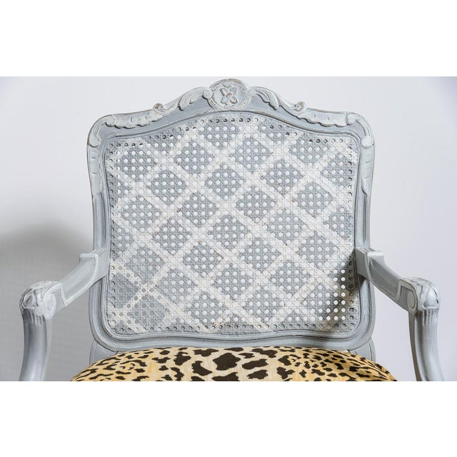 French Painted Regence Style Caned Chairs With Leopard Velvet Print For Sale - Image 11 of 13