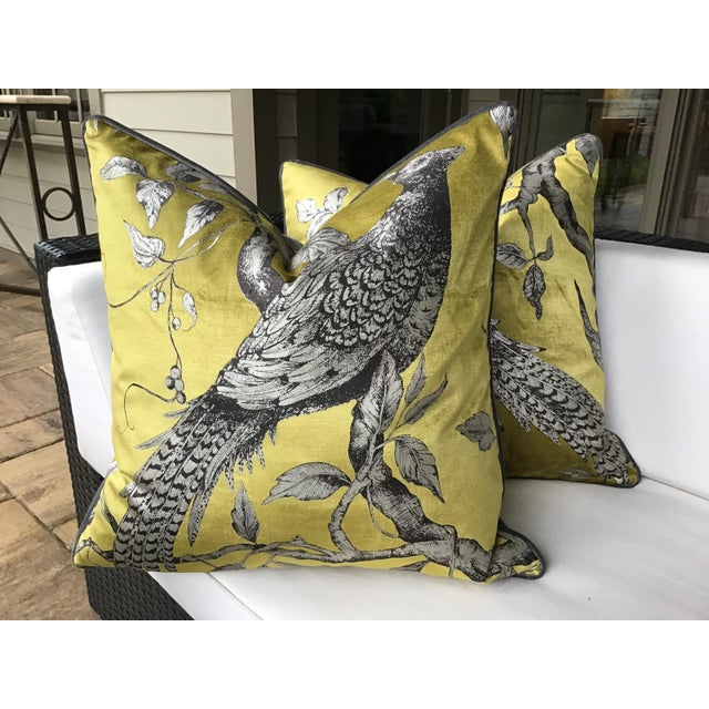 Chartreuse Zoffany Darnley Toile-Tigers Eye Chartreuse and Gray Down Filled Pillows - a Pair For Sale - Image 8 of 8