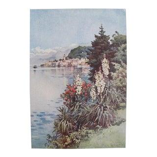 1905 Original Italian Print - Italian Travel Colour Plate - a Group of Yuccas, Villa Melzi, Lago DI Como For Sale