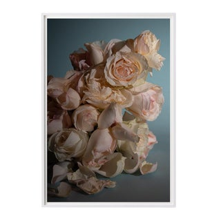 Still Life of Roses Photograph For Sale