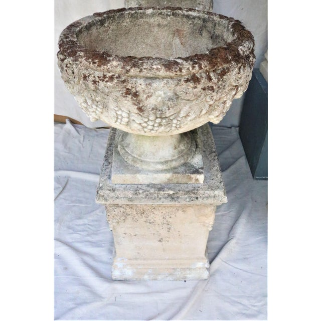 Early 20th Century Early 20th Century English Cast Stone Urns on Bases W/ Grape Motif, Set of 4 For Sale - Image 5 of 7