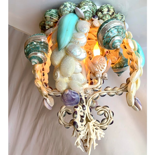 Crown of Shells Chandelier For Sale In West Palm - Image 6 of 12