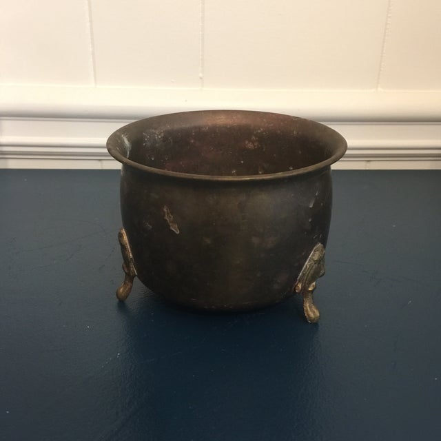 Brass Plant Container For Sale In Savannah - Image 6 of 8