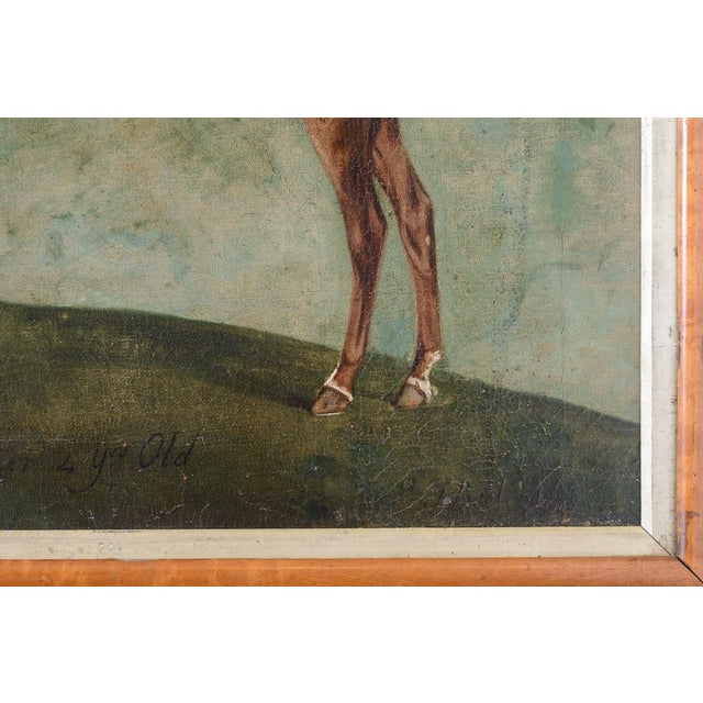 Late 18th Century Francis Santorius Horse Painting For Sale - Image 5 of 7
