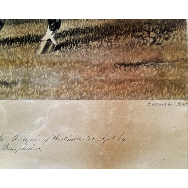 Rustic Early 19c Aquatint Engraving of Launcelot by John Frederick Herring Snr For Sale - Image 3 of 8