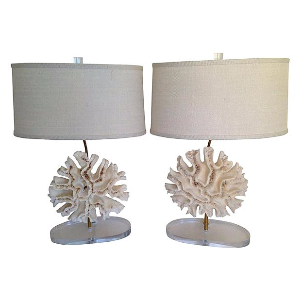 Natural Coral Lamps - Pair For Sale