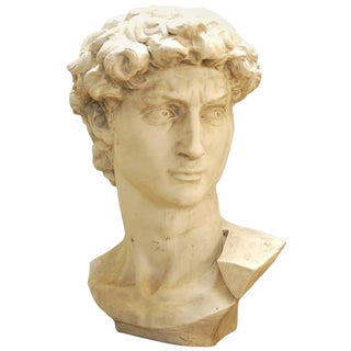 Michelangelo's David Monumental Bust For Sale