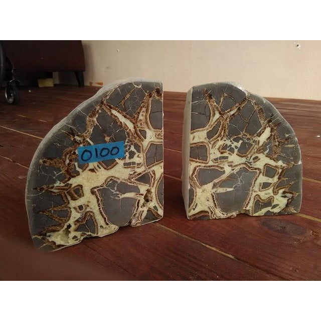 Exceptional pair of Septarian bookends. Completely one of a kind, with an exceptional deposit of minerals. **Septarian...