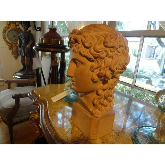 1920's Antique French Classical Inspired Terra Cotta Bust For Sale - Image 4 of 8