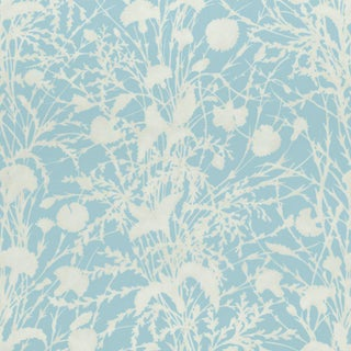 Scalamandre Wildflower Fabric in Morning Sky For Sale