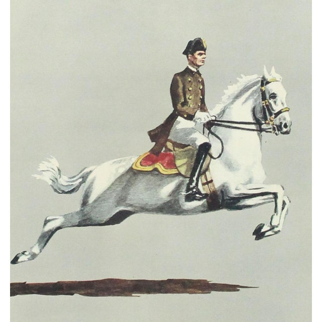 """English Traditional 1960s English Traditional Equestrian """"Capriole"""" Print For Sale - Image 3 of 6"""