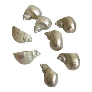 Carved Shell Napkin Rings - Set of 8 For Sale