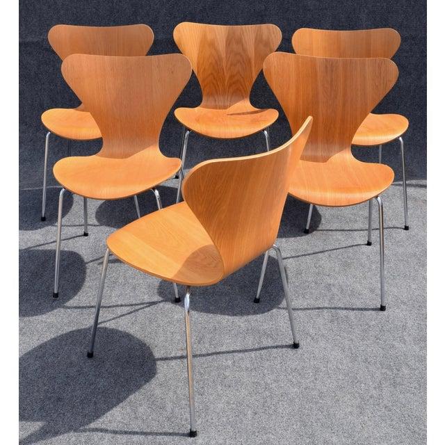 Arne Jacobsen Vintage Arne Jacobsen by Fritz Hansen Danish Modern Series 7 Chairs - Set of 6. For Sale - Image 4 of 11