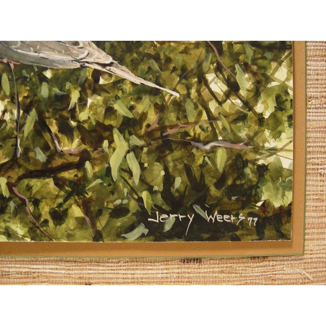 Illustration Mourning Dove Painting by Jerry Weers For Sale - Image 3 of 4