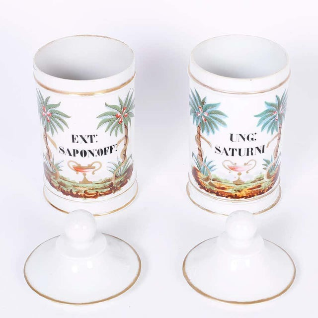 1920s French Porcelain Apothecary Jars - a Pair For Sale In West Palm - Image 6 of 8