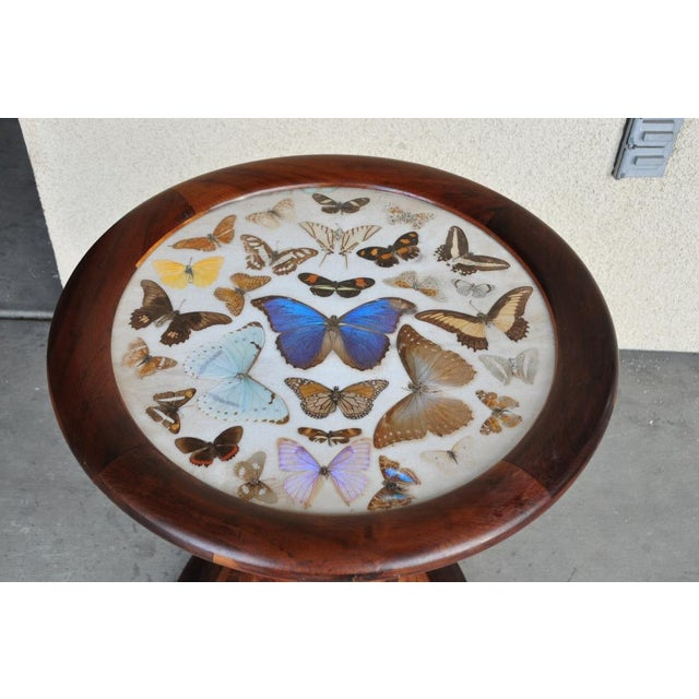 Brazilian Butterfly Table With Monkey Puzzle Wood Base For Sale In San Francisco - Image 6 of 11