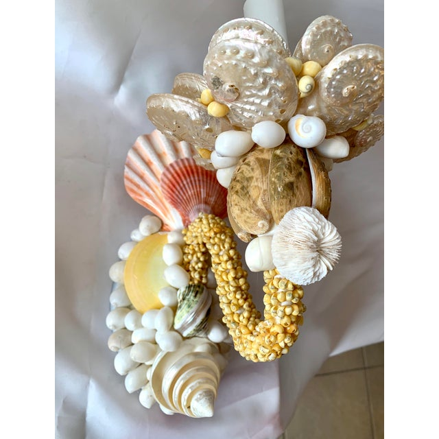 2020s Single-Light Seashell Sconces - a Pair For Sale - Image 5 of 8