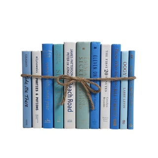 Modern Ocean ColorPak - Decorative Books in Shades of Blue and White For Sale