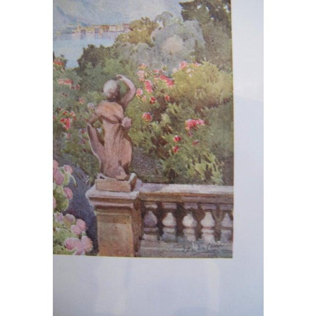 1905 Ella du Cane Print, Hydrangeas, Isola Bella, Lago Maggiore For Sale - Image 4 of 4