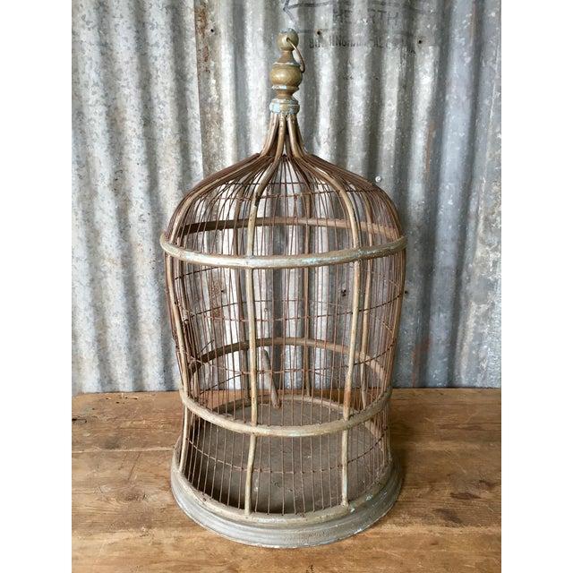 Antique Bentwood & Metal Bird Cage - Image 5 of 7