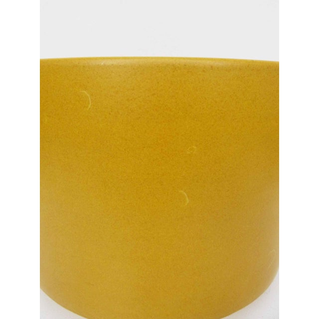Gainey Ceramics Mustard Yellow Planters - Set of 3 For Sale - Image 9 of 10