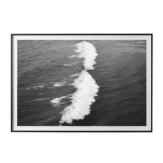 """Crush"" Unframed Photographic Print For Sale"