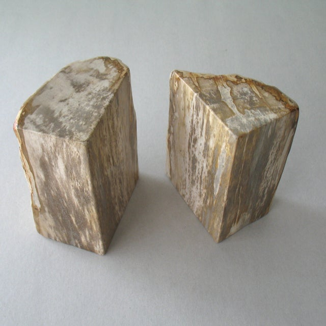 Petrified Wood Bookends - A Pair - Image 6 of 9