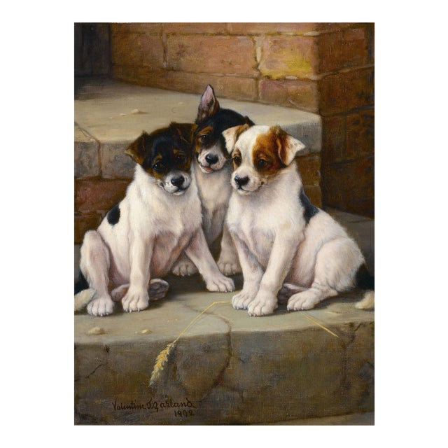 The New Litter by Valentine Thomas Garland For Sale