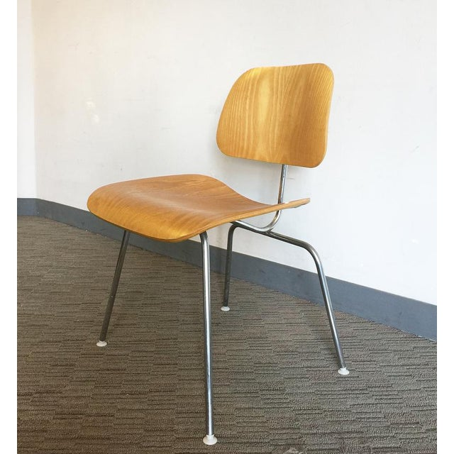 Eames Molded Plywood Dining Chair - Image 2 of 7