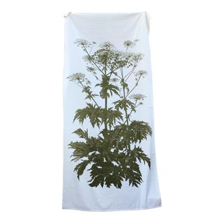 Heracleum Maximum or Cow Parsnip Botanical Fabric Panel For Sale