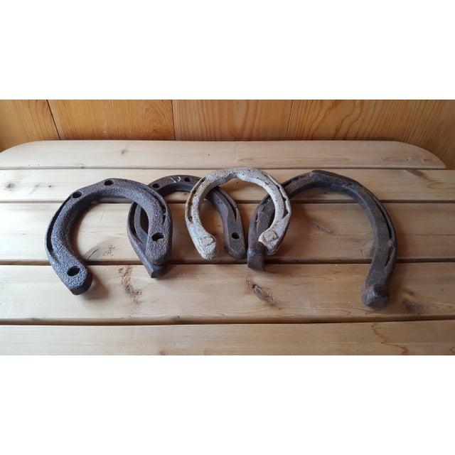 Vintage Iron Horseshoes - Set of 4 - Image 2 of 3