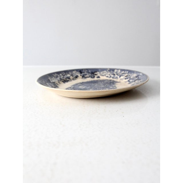 Cottage Thomas Hughes & Son Ironstone Platter For Sale - Image 3 of 9