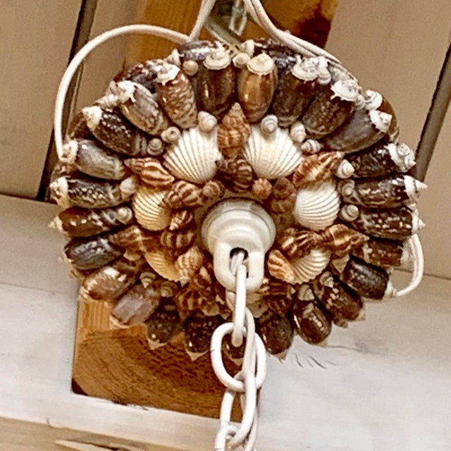 Christa's South Seashells Natural Five-Light Brown and White Shell Chandelier For Sale - Image 4 of 5